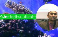 Dr Rozaimi-Imam Qunut Maka Qunutlah | Sesungguhnya Imam Itu Utk Diikuti